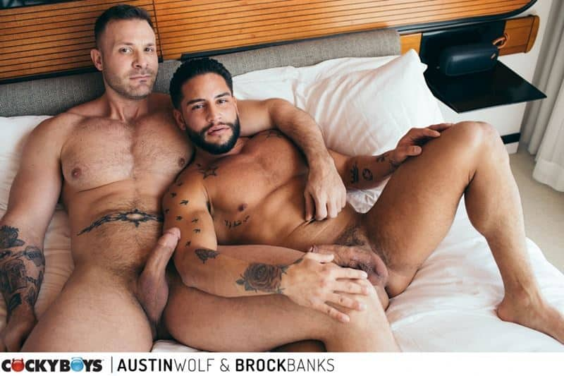 Hot hairy chested big muscle stud Austin Wolf's huge raw cock bareback fucks sexy bearded dude Brock Banks's hot hole