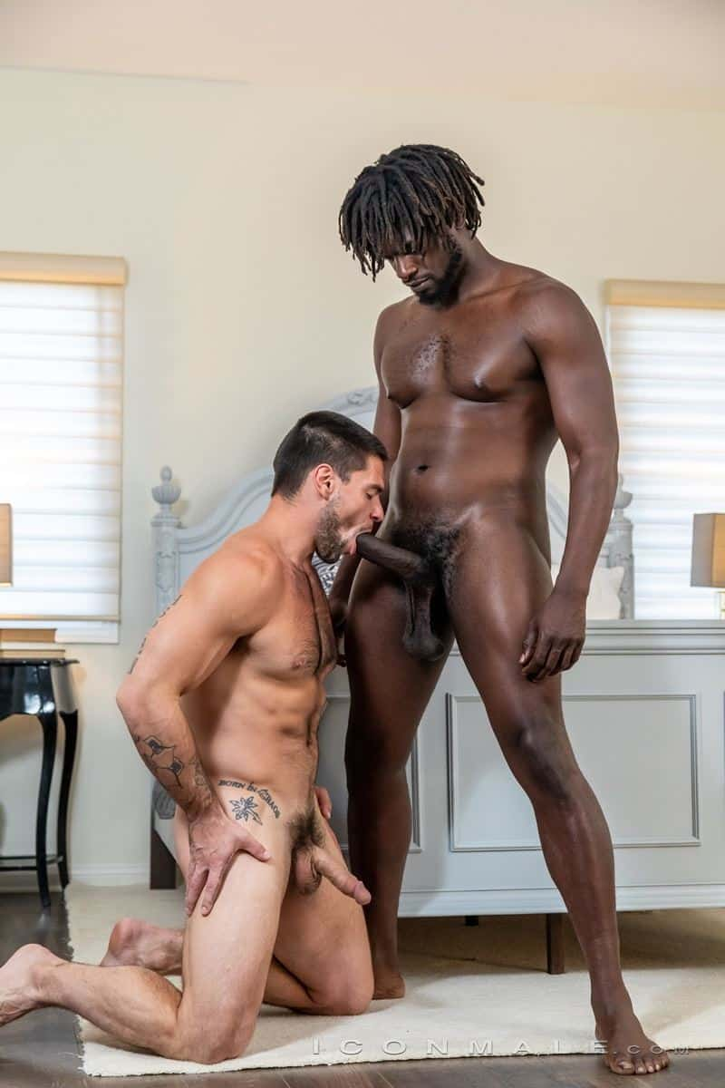 Sexy black muscle stud Devin Trez's huge ebony dick bareback fucking hairy hottie Aspen's tight bubble butt